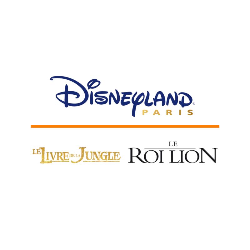 Disneyland Paris 1 jour 2 parcs - Offre spéciale