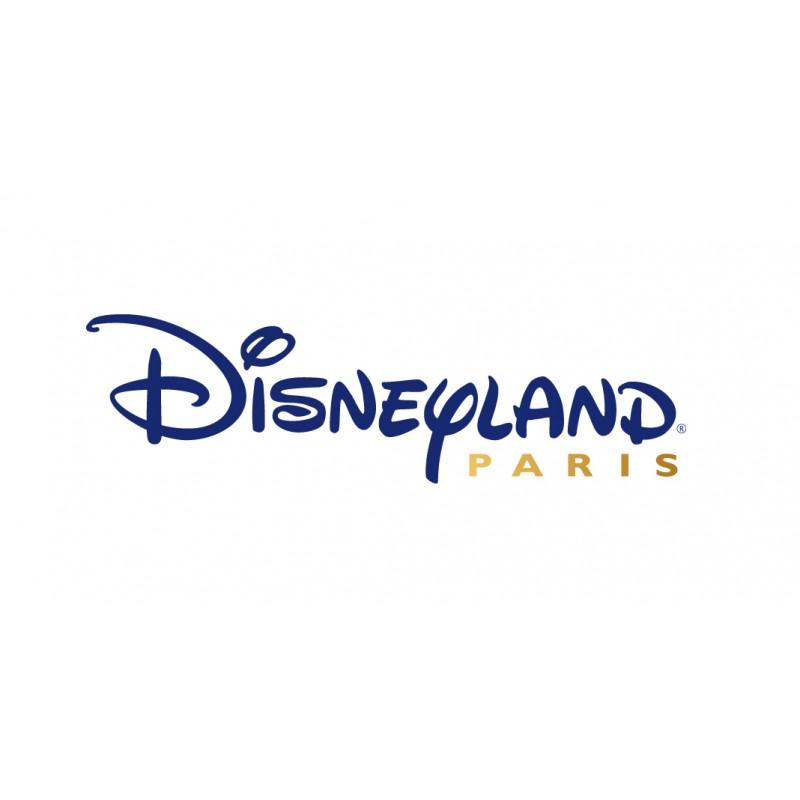 Disneyland Paris 1 jour 1 parc