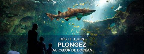 Reouverture Aquarium La Rochelle